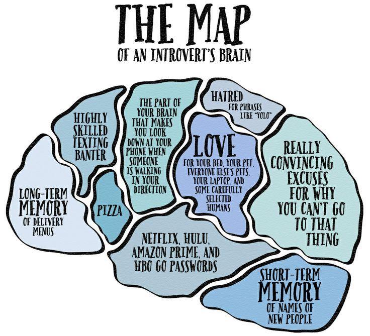introverts-brain